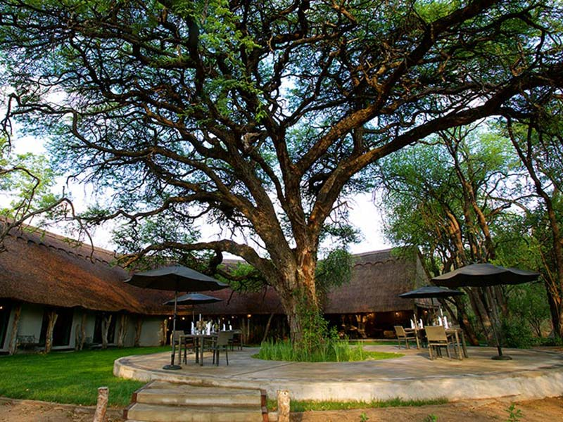 Zimbabwe Camelthorn Lodge Hwange National Park